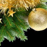 Dias scannen und zu Weihnachten verschenken